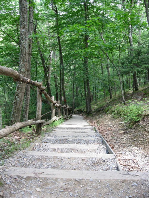 The steepst steps after the climb.